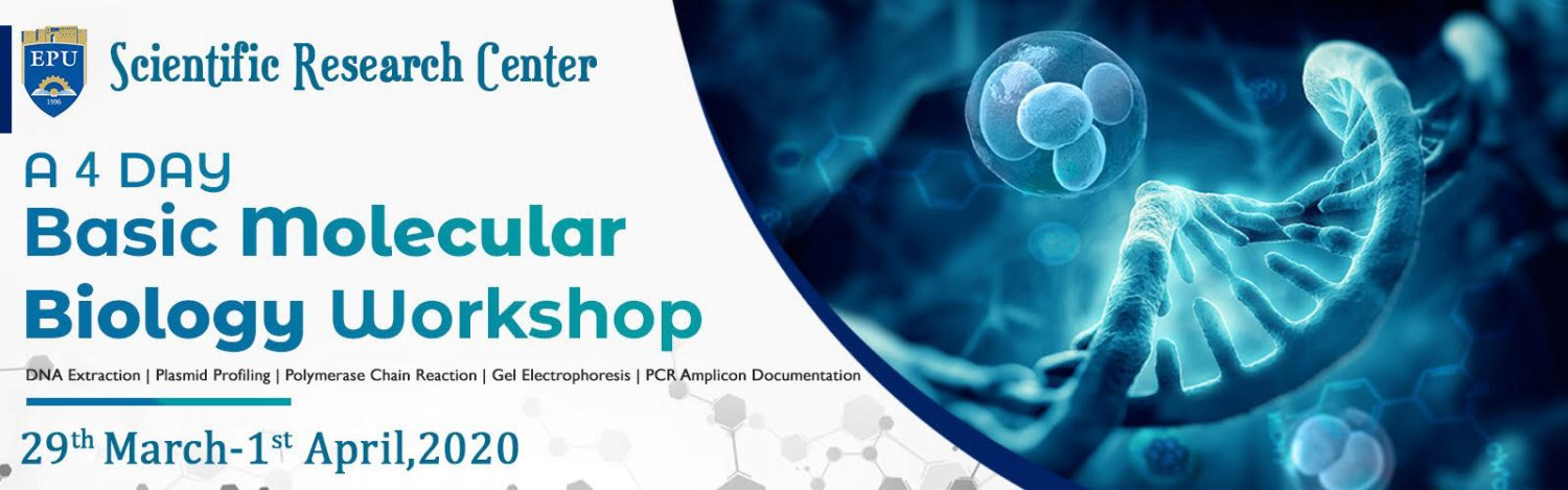 """Basic Molecular Biology techniques: From DNA extraction to PCR application"""